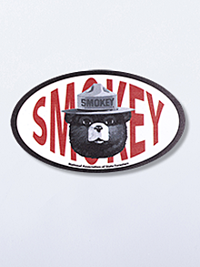 Smokey Bear Car Magnet (set of 50)